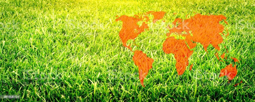 Grass field close up. Football field. Rugby field. World map...