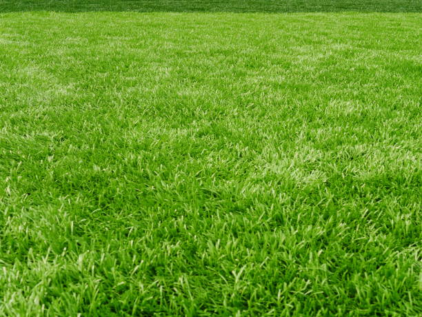grass field for football sport - diminishing perspective stock pictures, royalty-free photos & images