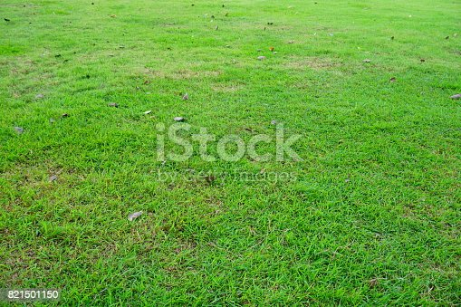 474672896 istock photo Grass Field in public park 821501150