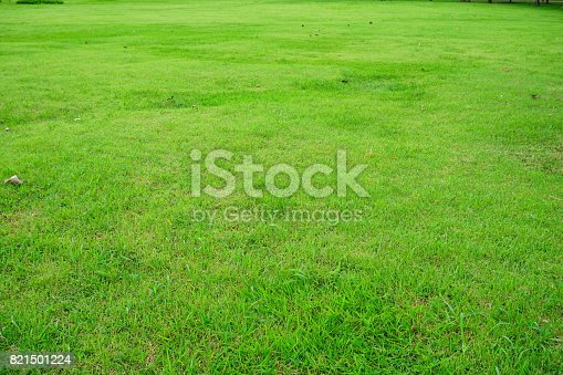474672896 istock photo Grass Field in public park 821501224