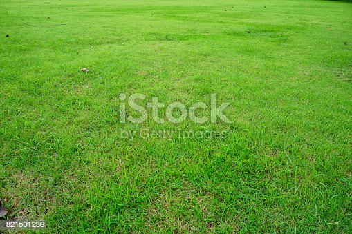 474672896 istock photo Grass Field in public park 821501236