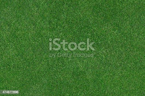 istock Grass Field 474672896