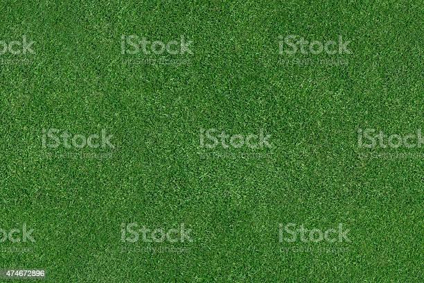 Grass field picture id474672896?b=1&k=6&m=474672896&s=612x612&h=xktgiuubo8rcxfdeeiy hdzgace3wvlf4byof777ib4=