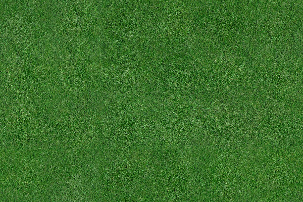 Grass Field An aerial view of a large patch of some freshly cut, healthy, green grass. turf stock pictures, royalty-free photos & images