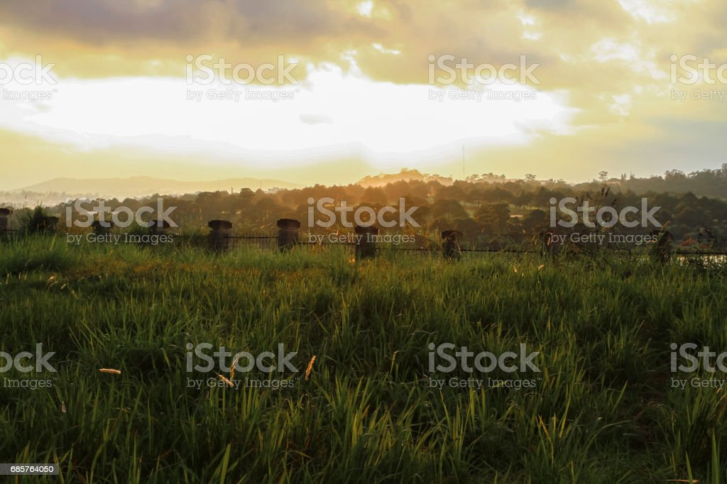 grass field with fence royalty free stockfoto