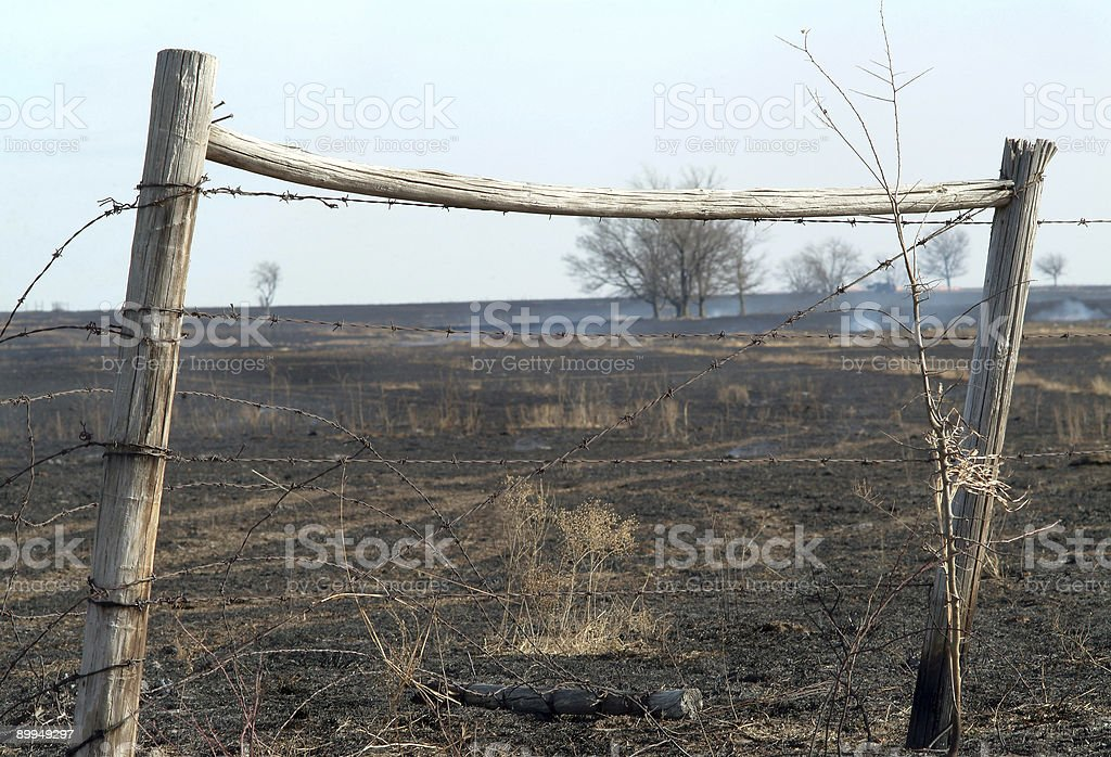 grass fire royalty-free stock photo