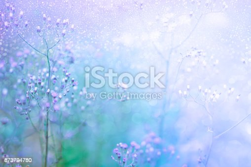 grass flower field in spring background with sunlight in purple pastel tone, sweet background with glitter light and bokeh effect with copy space