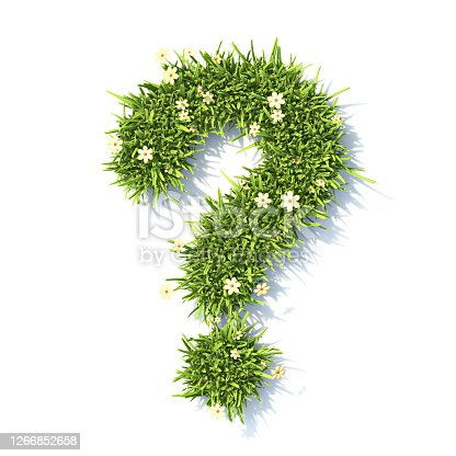 Grass font Question mark sign 3D rendering illustration isolated on white background