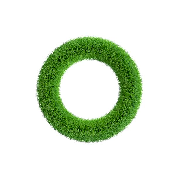 Grass frame in form of circle. Isolated on white background. – Foto