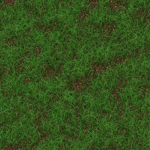 Grass generated seamless texture stock photo