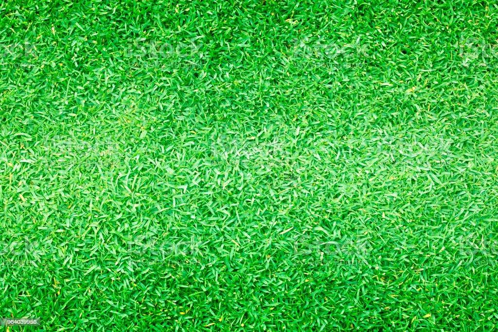 Grass green field football - Royalty-free Abstract Stock Photo