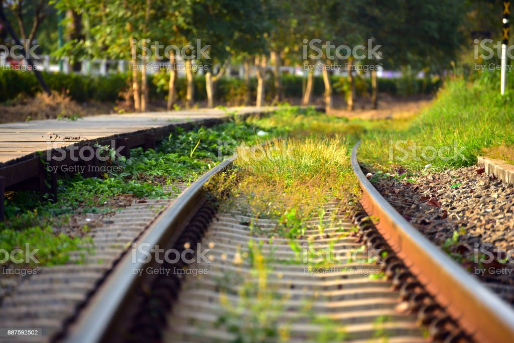 grass grow alongside railroad while have no trains in evening light stock photo