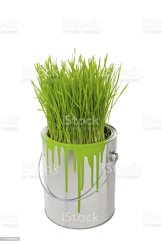 Grass growing in a can, paint spilling over the side stock photo