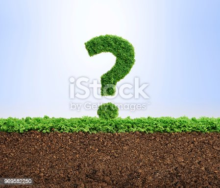 istock Grass growth environment question concept 969582250