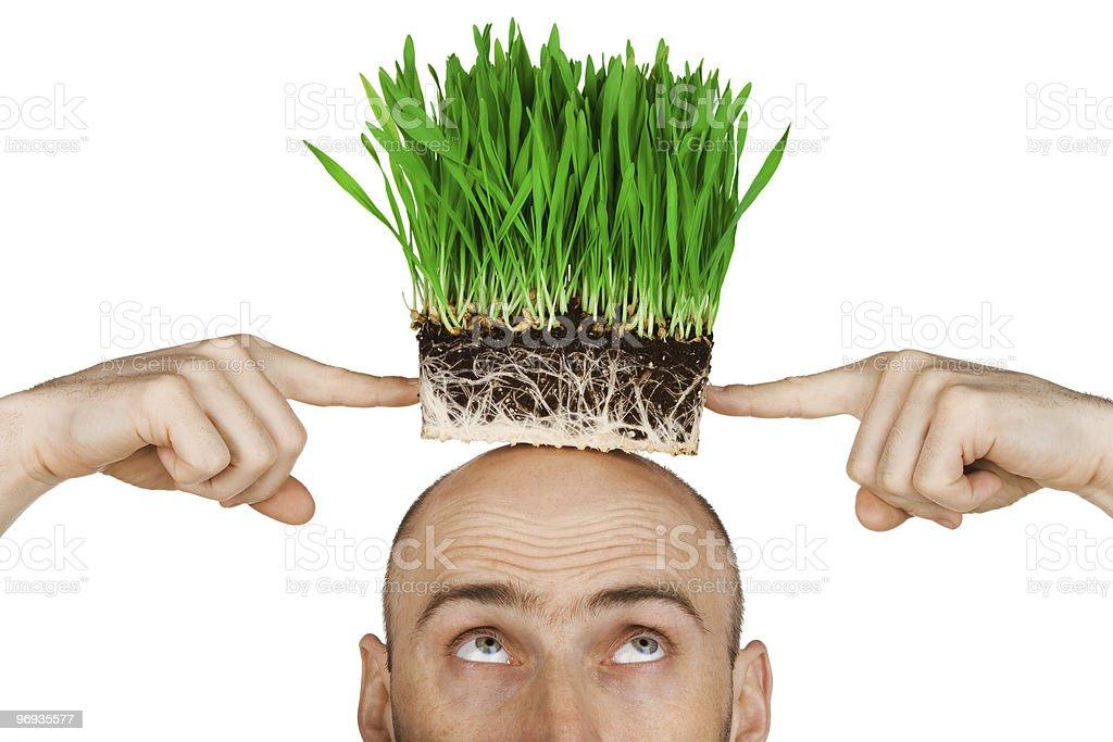 Grass hair royalty-free stock photo