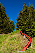 Mountain hill, grass hill pine forest and fun red slider in Marbachegg recreation area - Entlebuch UNESCO Biosphere Reserve in central Switzerland