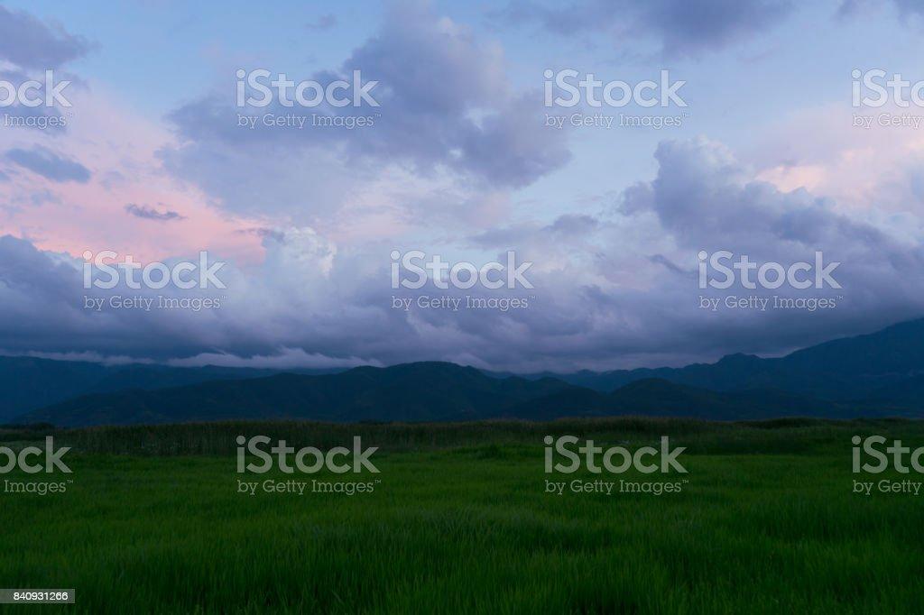 Grass Hug Sky stock photo