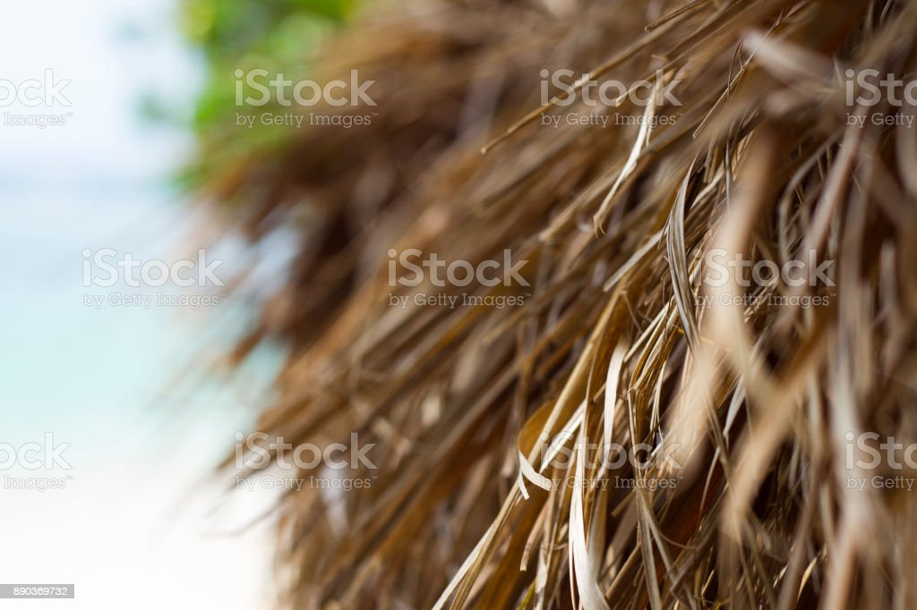 Grass Hut Close-up stock photo
