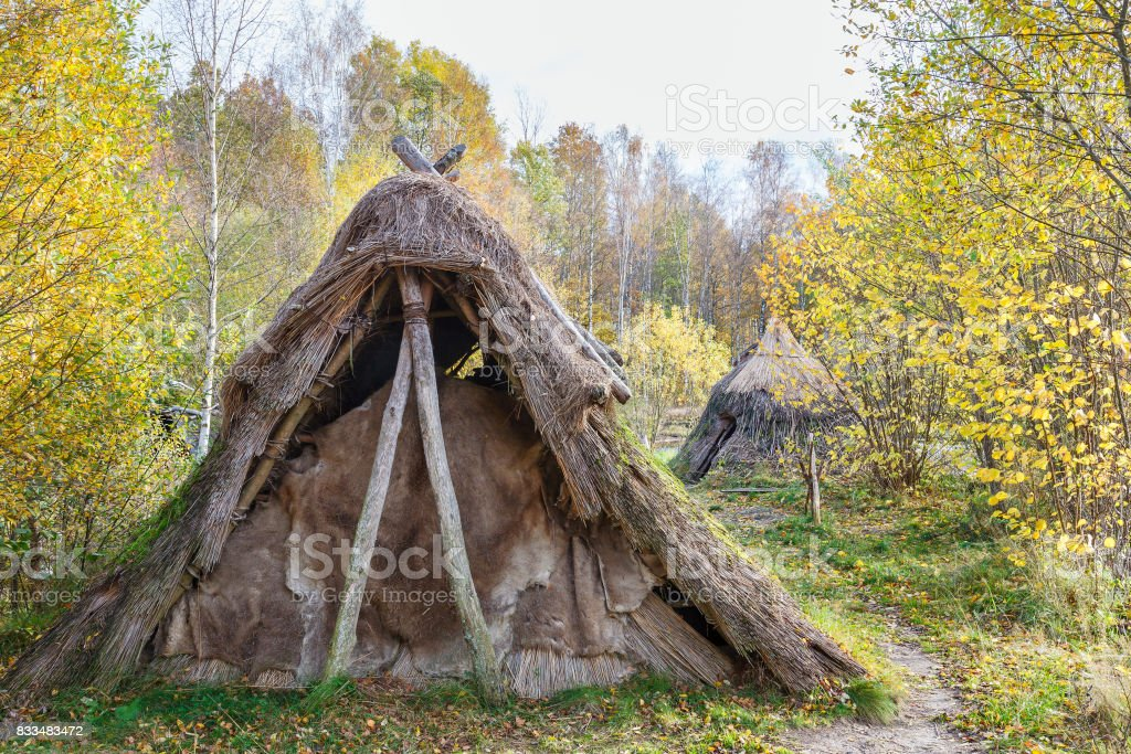 Grass hut in the forest in autumn stock photo