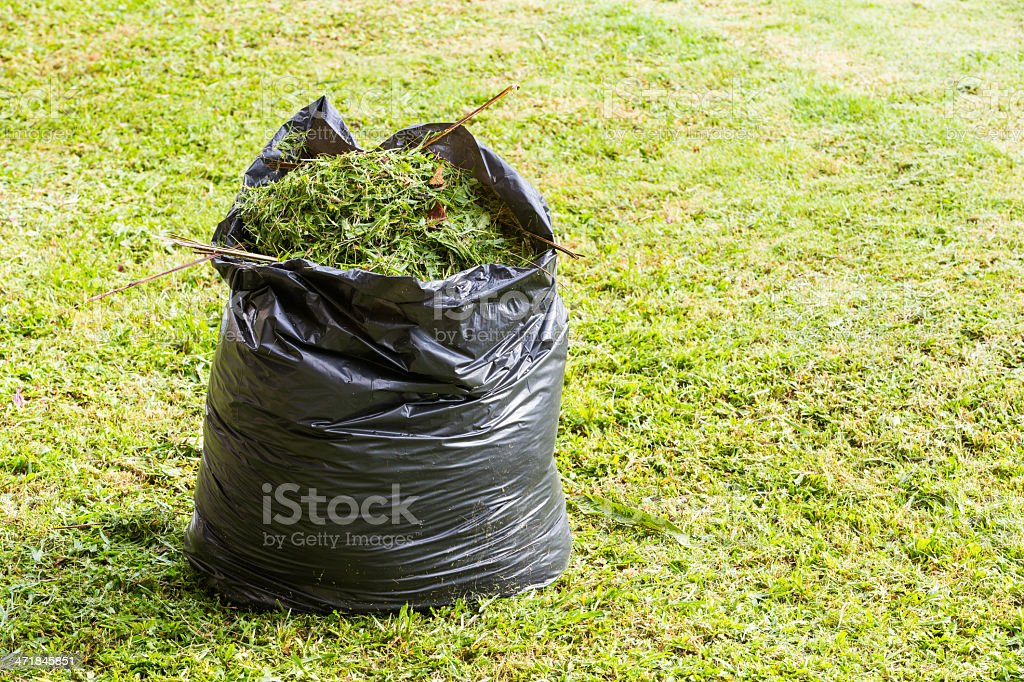 Grass in garbage bag stock photo