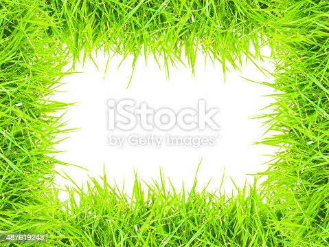 istock grass isolated for text frame and picture 487619243