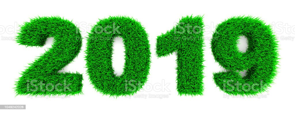 2019 Grass , isolated stock photo