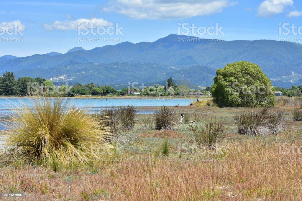 Grass land around shallow estuary stock photo