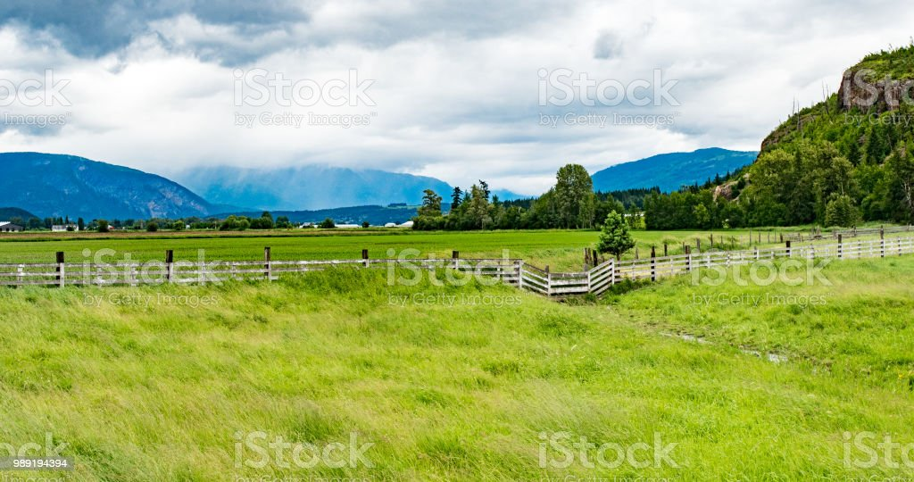 grass land farm scenic in Kelowna stock photo