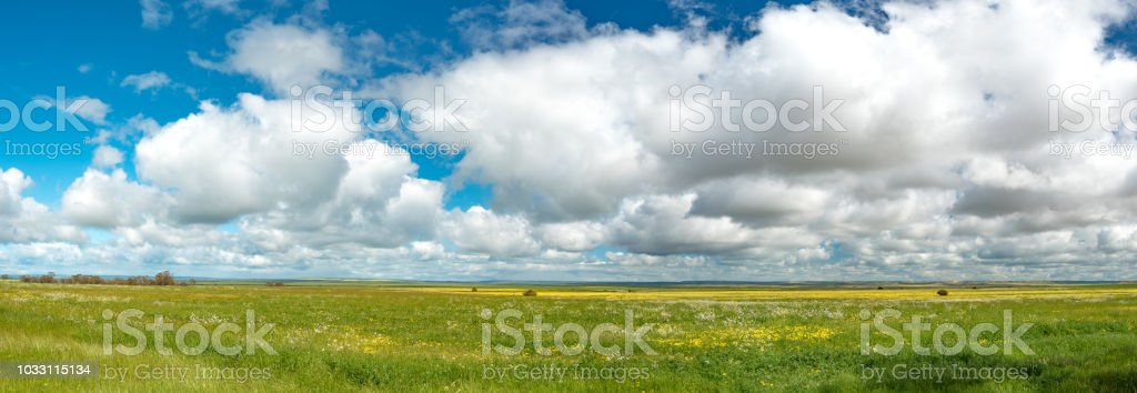 Grass land landscape panorama with hanging clouds hovering and dominating over the country side in Western Australia. stock photo