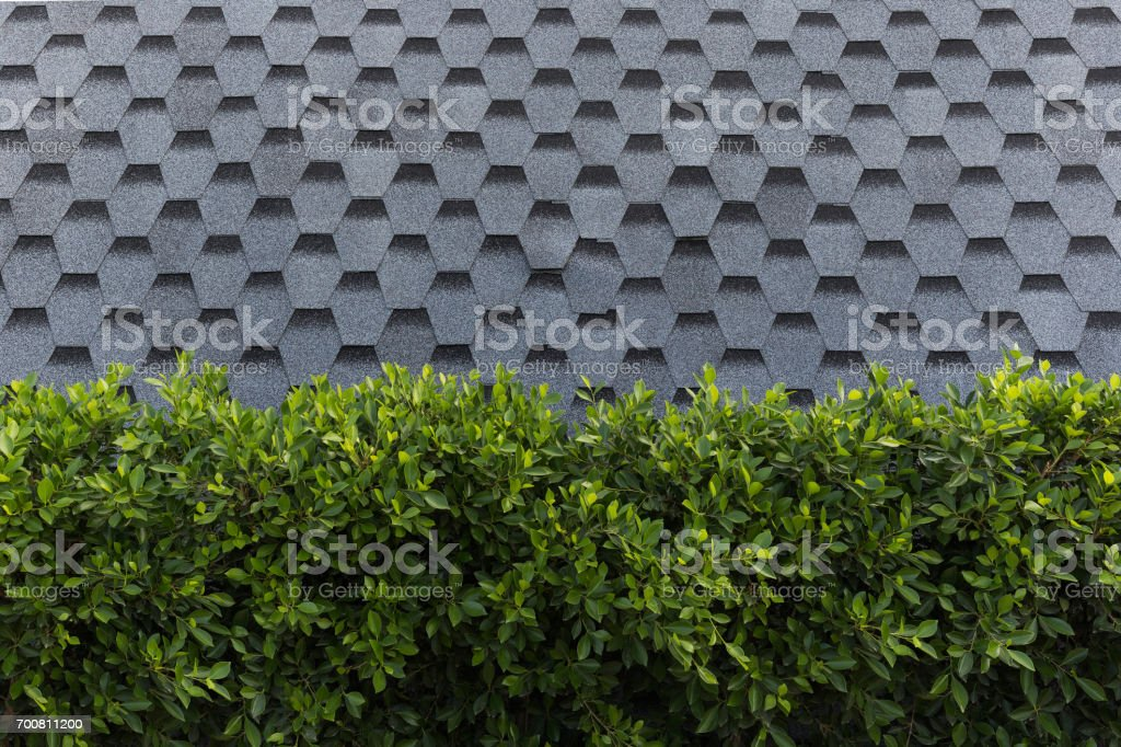 grass line in front of insulation wall stock photo