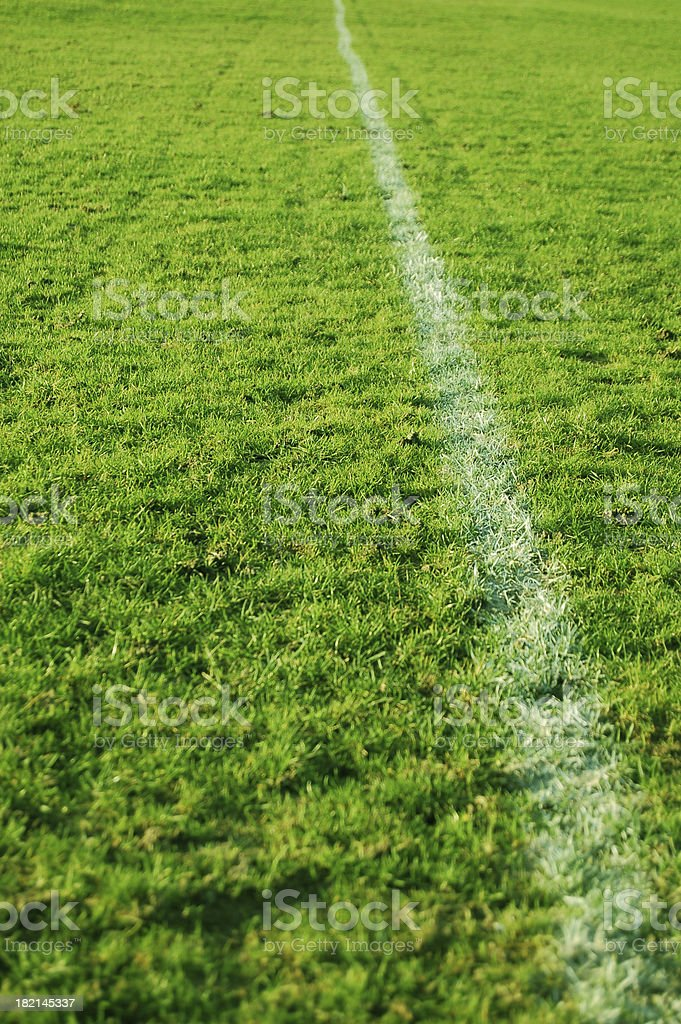 Grass Line royalty-free stock photo