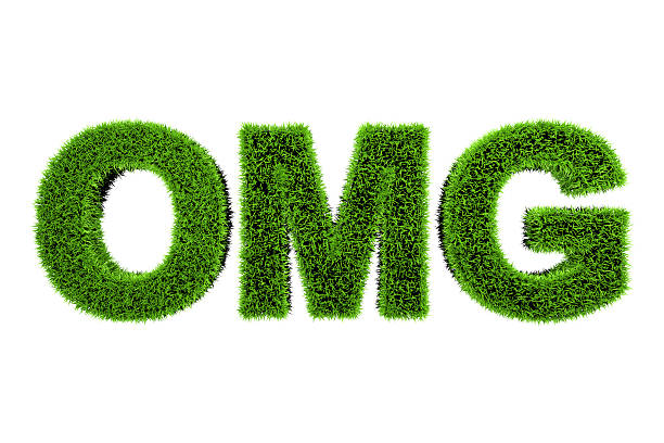 grass made word omg - omg stock photos and pictures