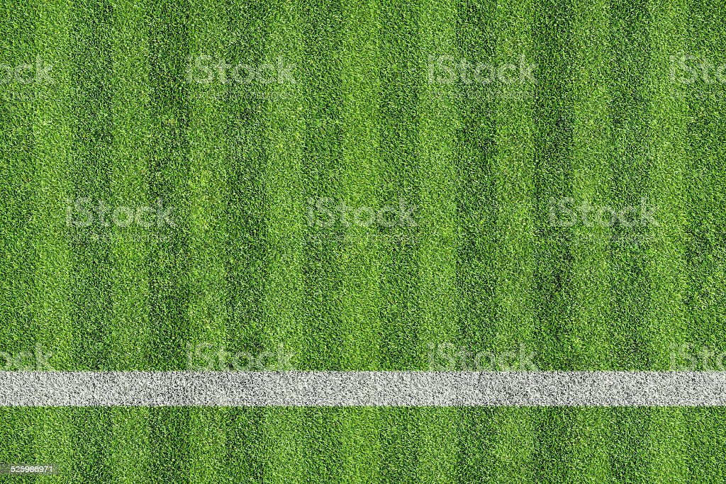 grass of sport field stock photo