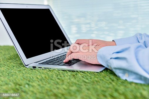 937328186 istock photo grass office 535416547