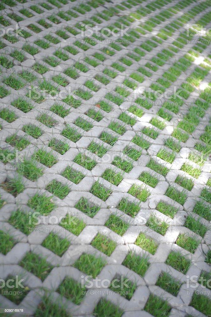 Grass pavers stock photo