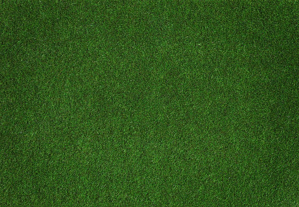 Grass A clump of synthetic grass turf stock pictures, royalty-free photos & images