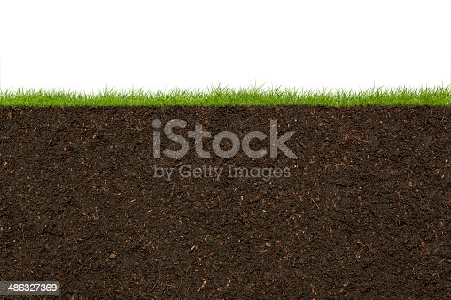 Grass and soil.