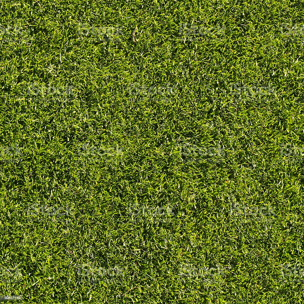 Grass, seamless royalty-free stock photo