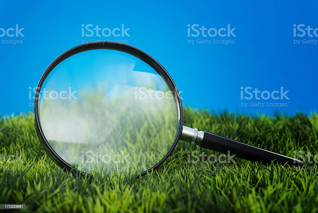 Grass seen through magnifying glass royalty-free stock photo