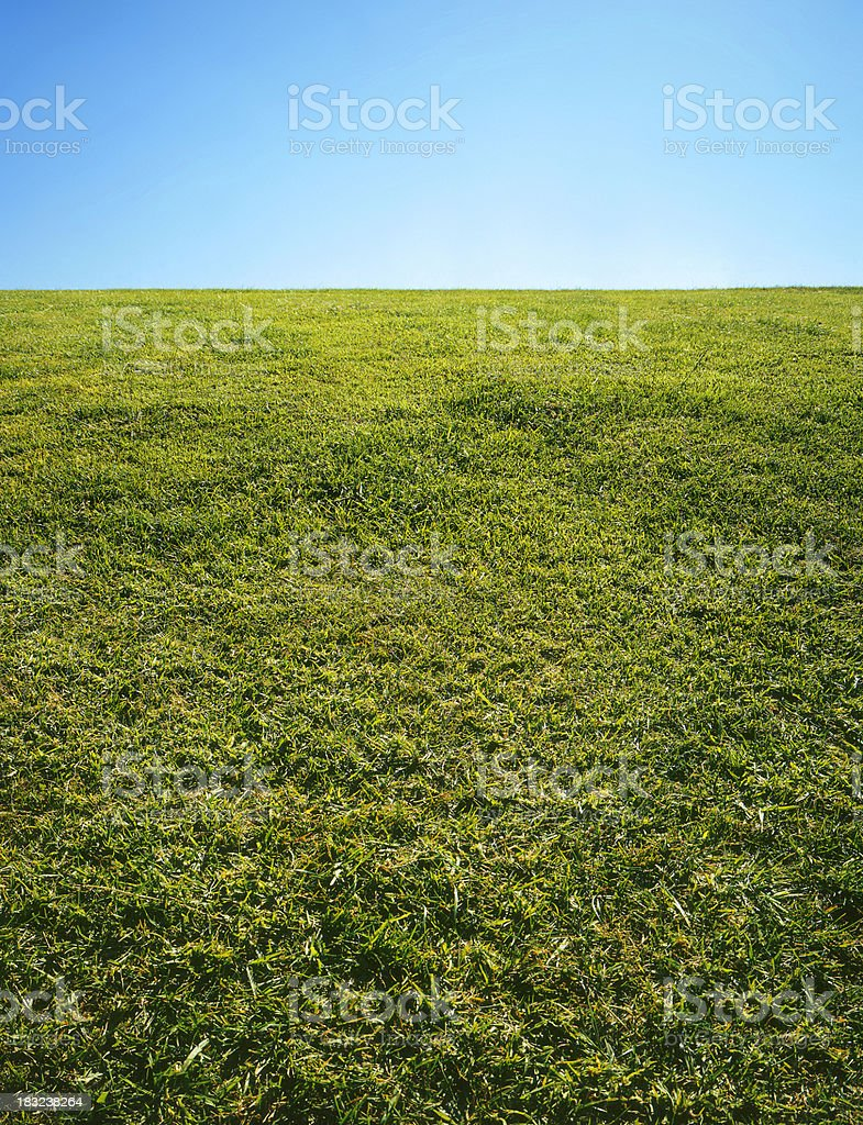 Grass & Sky royalty-free stock photo