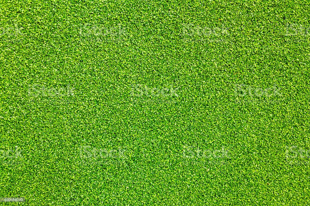Grass texture. stock photo