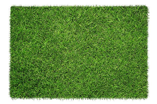 textura de grama  - gramado terra cultivada - fotografias e filmes do acervo