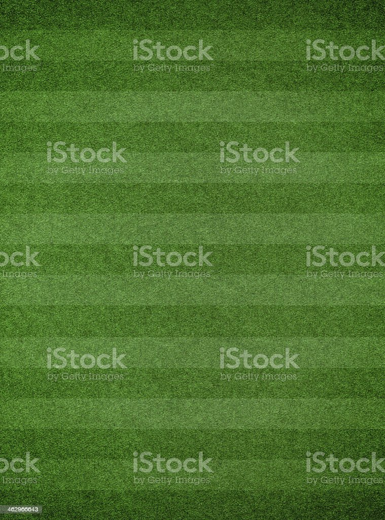 Grass texture with stripe background stock photo