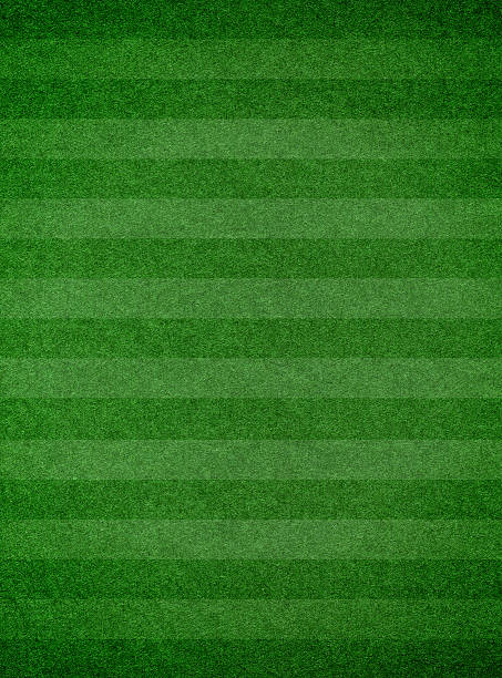 Grass texture with stripe background Grass texture with stripe turf stock pictures, royalty-free photos & images
