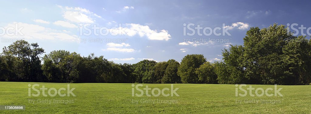 Grass Trees and Sky royalty-free stock photo
