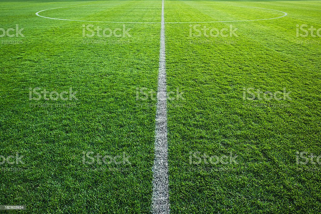 Grass turf on a sports field stock photo
