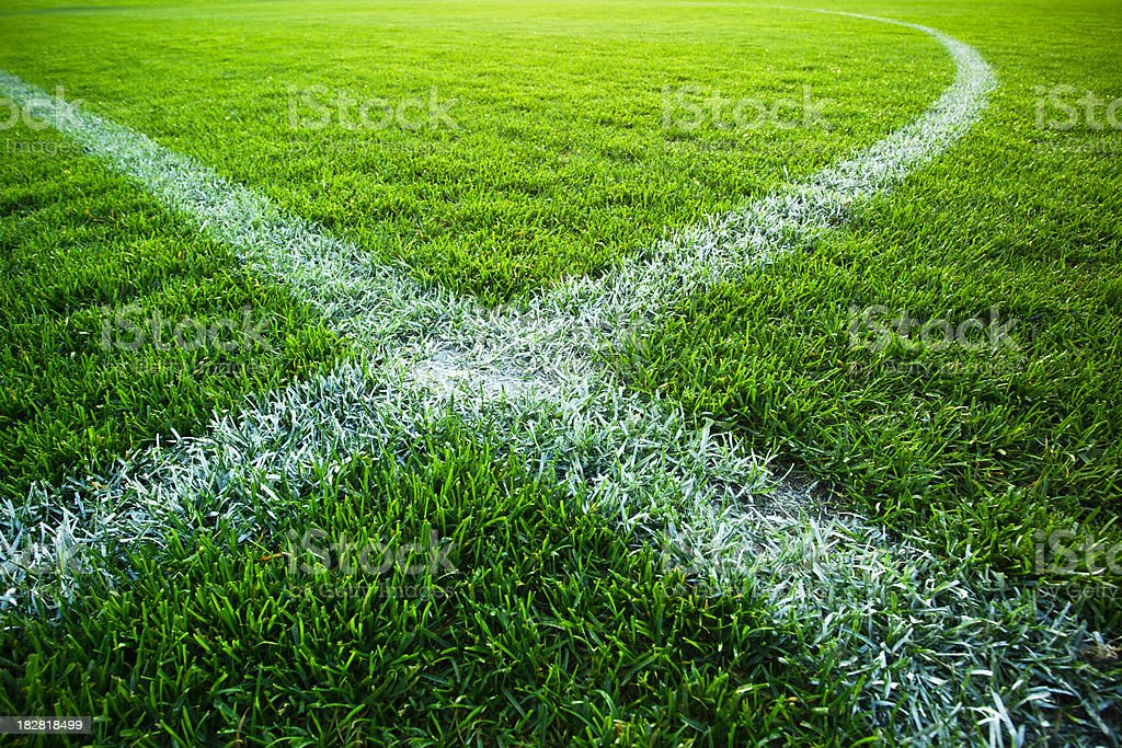 Grass turf on a sports field royalty-free stock photo