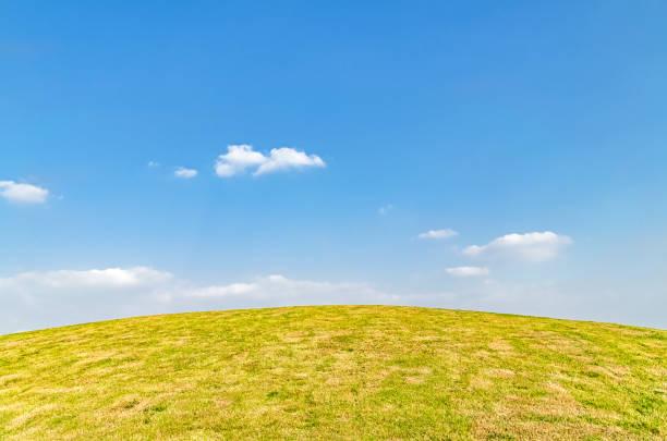 Hierba bajo el cielo azul y nubes blancas - foto de stock