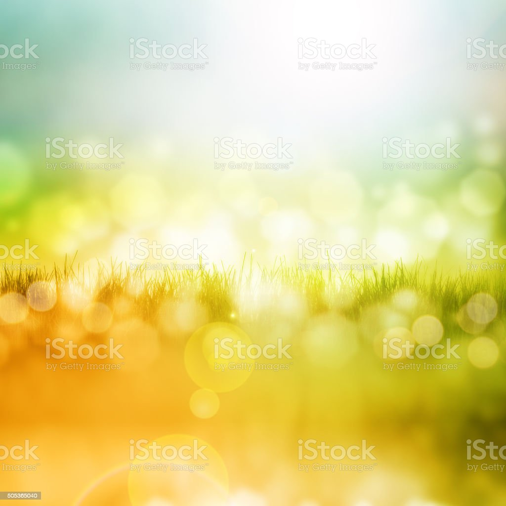 Grass with reflection stock photo