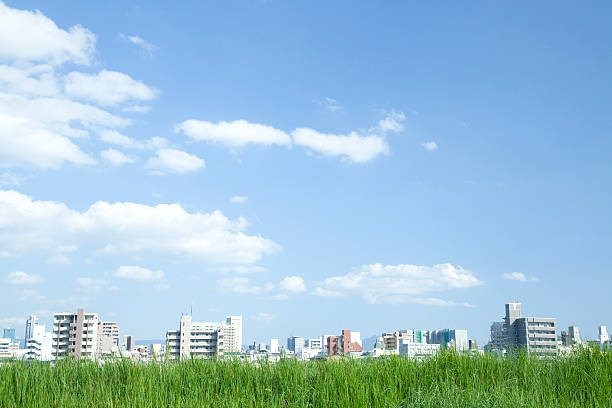 Grassland and city Grassland and city under the blue sky. horizon over land stock pictures, royalty-free photos & images